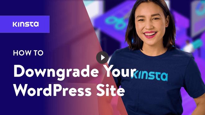 downgrade-wordpress